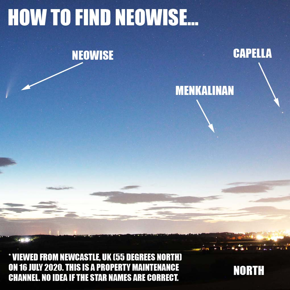 How to find Neowise comet